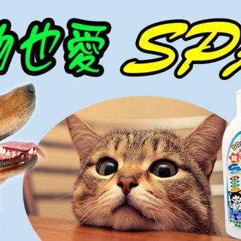 寵物用品系列